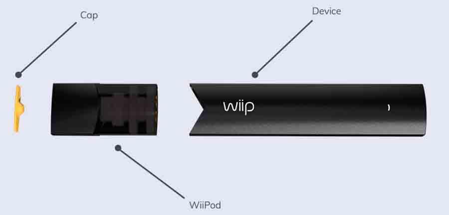 wiip_3.jpg