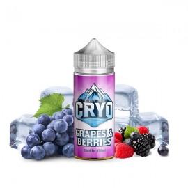 120 ml Grapes & Berries INFAMOUS CRYO - 20ml Shake&Vape