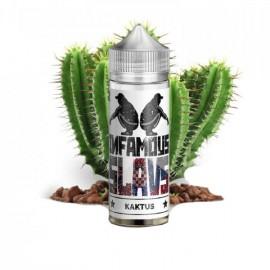 120 ml Kaktus INFAMOUS Slavs - 20 ml S&V