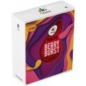 3-Pack Berry Burst Dekang High VG