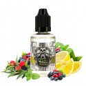 30 ml Disorder Punk Juice aróma